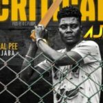 AUDIO/VIDEO: Real Pee Ajaba – Critical
