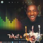 MUSIC: Wale Leshi – What A Feeling