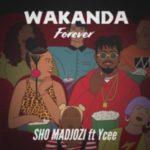 MUSIC: Sho Madjozi – Wakanda Forever Ft. Ycee