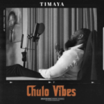 MUSIC: Timaya Ft. Burna Boy – Pull Up