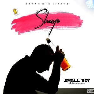 AUDIO + VIDEO: Small Boy – Shayo